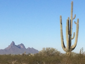 Picacho Peak in the distance