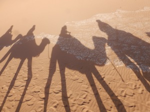 Shadow of people riding camels.